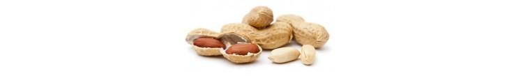 Peanuts Arachides
