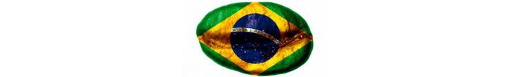 Kawa brazylijska Santos